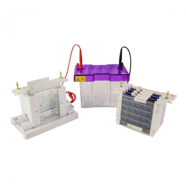 Artikelbild 1 des Artikels EasyPhor PAGE Mini Elektrophorese & Blotting
